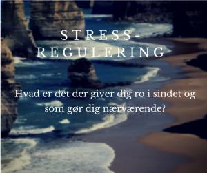 stress og selvregulering
